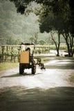 Tracteur jaune dans la cour de serre à raisin Photographie stock