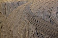 Tracteur nettoyé de sable sur la plage Image stock