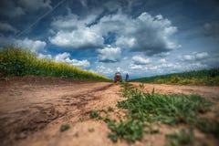 Tracteur rouge dans un domaine Images libres de droits