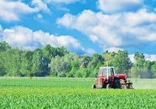 Tracteur sur le beau paysage images libres de droits