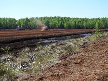 Tracteurs fonctionnant dans le marais Photo stock
