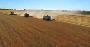 Tracteurs sur le champ de récolte banque de vidéos