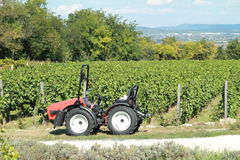 Tractor. A new red tractor in front of the wineyard royalty free stock photo