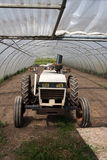 Tractor. Small tractor for agriculture production Stock Image