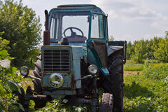Tractor. Old tractor in summer on field Royalty Free Stock Photography
