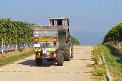 Tractor. Driving to pick up wine grapes Stock Photography