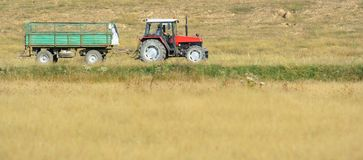 Tractor. With trailer in a field Stock Photo