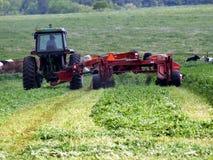 Tractor stock foto's
