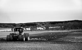 Tractor. A tractor plowing and gulls following Stock Images