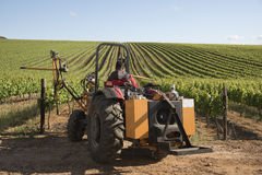 Tractor with attachment for trimming vines Stock Photo