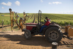 Tractor with attachment for trimming vines Royalty Free Stock Image