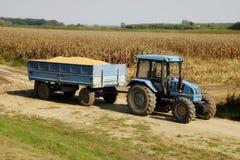 Tractor azul en el campo de maíz Imagen de archivo