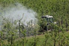 Tractor bespuitend insecticide of fungicide in appelboomgaard stock afbeelding
