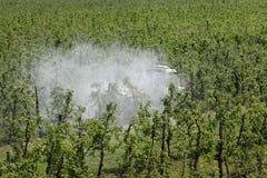 Tractor bespuitend insecticide of fungicide in appelboomgaard royalty-vrije stock afbeeldingen