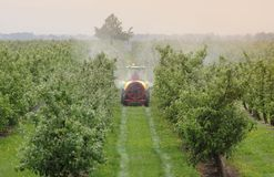 Tractor bespuitend insecticide of fungicide in perzikboomgaard royalty-vrije stock foto