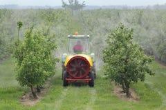 Tractor bespuitend insecticide of fungicide in perzikboomgaard royalty-vrije stock fotografie