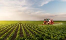 Tractor bespuitende pesticiden bij het gebied van de sojaboon stock afbeeldingen