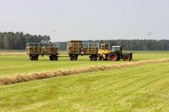 Tractor bij het oogsten van het Stro Royalty-vrije Stock Fotografie