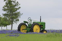 Tractor in bluebonnets royalty-vrije stock foto