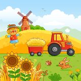 Tractor carries a hay. royalty free illustration