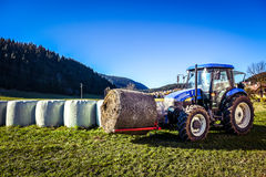 Tractor carrying hay bale rolls - stacking them on pile. Stock Photography