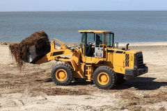 Tractor cleans the beach Royalty Free Stock Photography