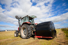 Tractor collecting a roll of haystack in the field Stock Image