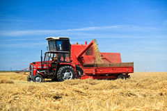 Tractor and combine harvesting. Wheat on a field Stock Image
