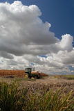 Tractor, Corn, And Skies Royalty Free Stock Images