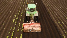Tractor cultivates the land in the field. Aerial view Tractor Hilling Potatoes with disc hiller. Farmer in tractor preparing land with seedbed cultivator in Royalty Free Stock Photography