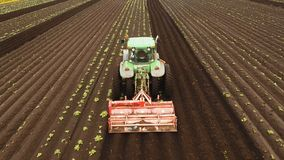 Tractor cultivates the land in the field. Aerial view Tractor Hilling Potatoes with disc hiller. Farmer in tractor preparing land with seedbed cultivator in Stock Photography