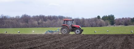 The tractor cultivates the land and plants seeds in the spring field royalty free stock photography
