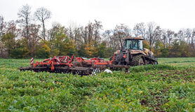 Tractor cultivating Stock Images