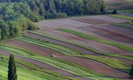 Tractor cultivating field pictured from air royalty free stock image