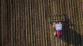 Tractor cultivating field at spring Stock Images