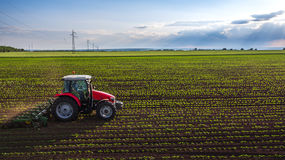 Tractor cultivating field at spring Royalty Free Stock Photo
