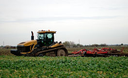 Tractor cultivating Royalty Free Stock Photography