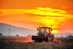 Tractor with cultivator handles field before planting, sunset Royalty Free Stock Photo