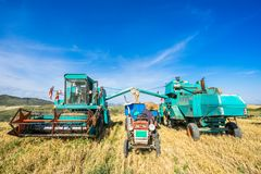 Free Tractor Cut Wheat Royalty Free Stock Photography - 127655387