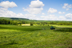 Tractor cutting hay field. Landscape Stock Images