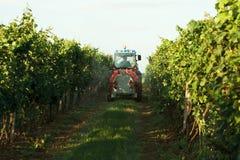 Tractor in de wijngaard Stock Afbeelding