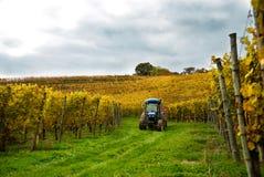 Tractor in de Wijngaard Royalty-vrije Stock Afbeelding