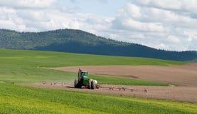 Tractor die de gebieden bespuit Stock Afbeeldingen
