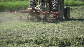Tractor die gras in dichte omhoog langzame motie cultiveren, die voor de winter voorbereidingen treffen stock video