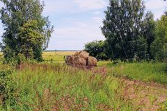 Tractor driven fresh hay on special agricultural trailer. Royalty Free Stock Photography
