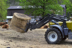 Tractor driven hay Stock Image