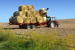 Tractor driven straw bales Royalty Free Stock Image