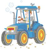 Tractor driver with a small dog Stock Photography