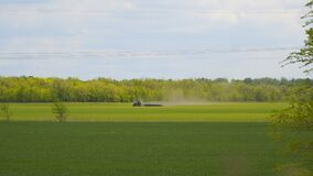 Tractor drives through a green field and sprays young seedlings from pests