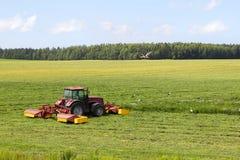 Tractor en el campo, rodeado por las cigüeñas Imagen de archivo libre de regalías
